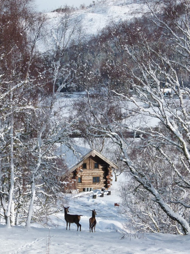 Grooms Room - Eagle Brae Lodges - Winter